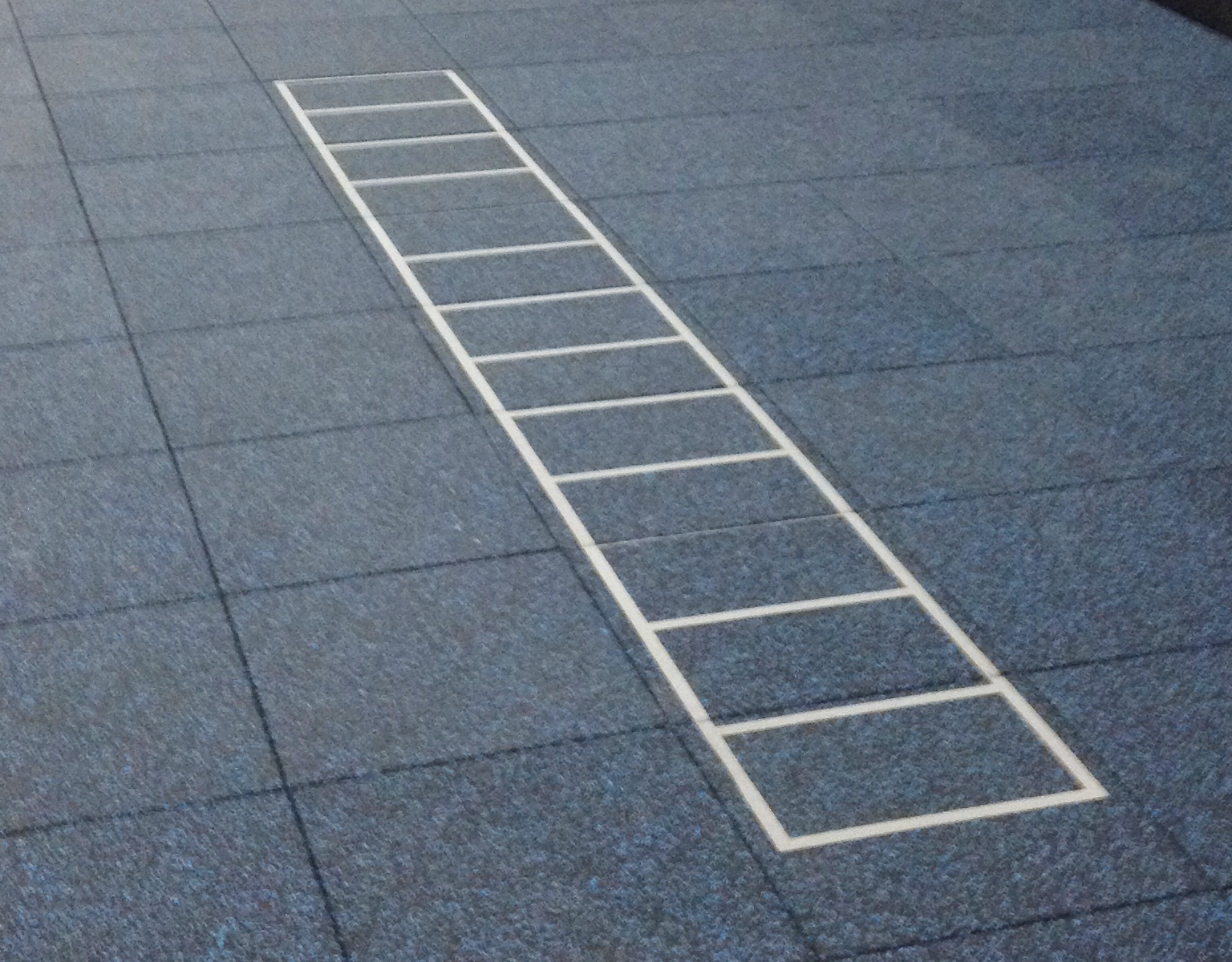inlaid-agility_ladder